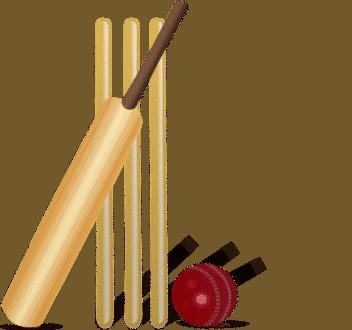 cricket-155965_960_720